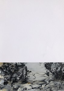 bruissement-24-42x29-papier-min